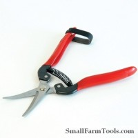 Curved Grape & Tomato Shears Tools